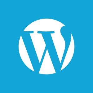WordPress may be tough for building websites, but easy for blogging.