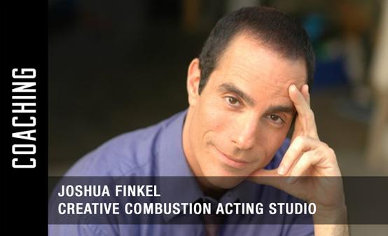Acting Coaches in Online,Los Angeles - Joshua Finkel